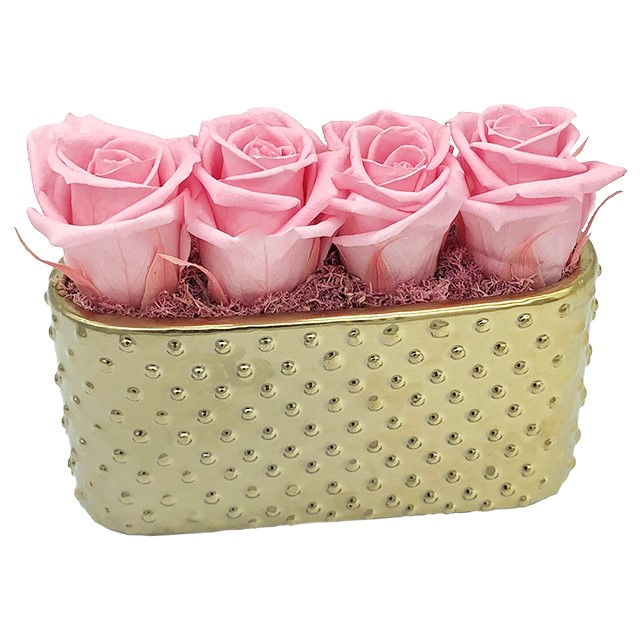 Aurora Dainty Golden Ceramic Planter With 4 Long Lasting Roses