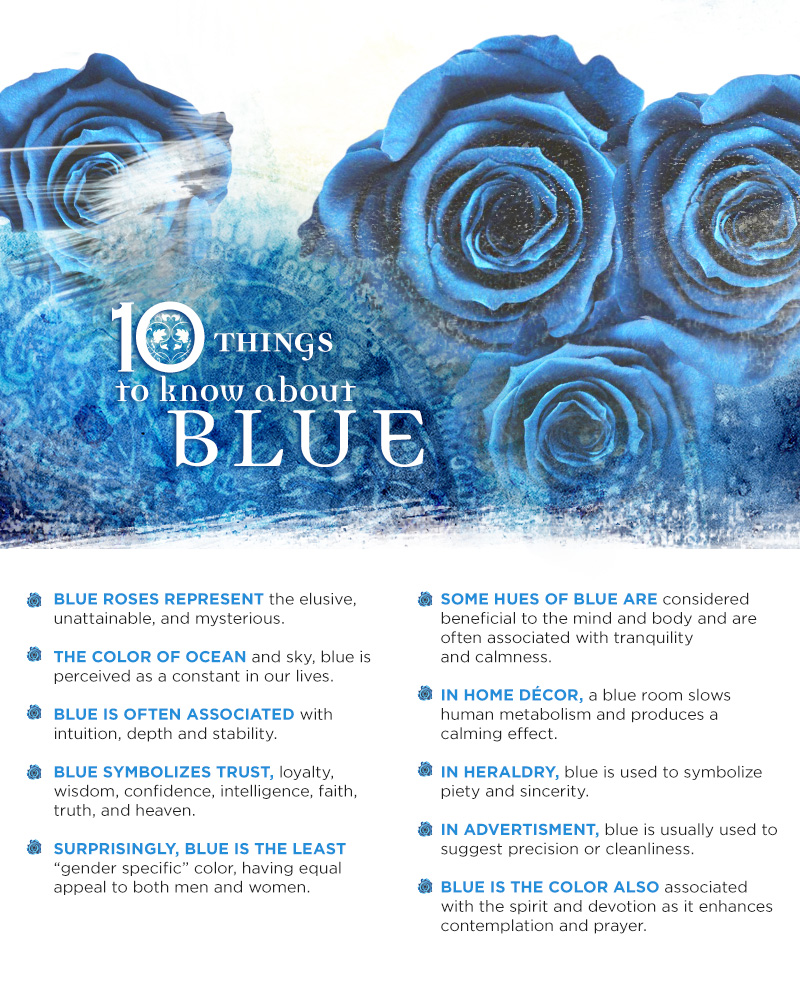 10 Things To Know About Blue