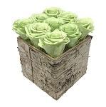 Heinau Birch Cube Green Roses