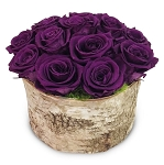 Heinau Roses Box (Madison Grey) Purple Flowers