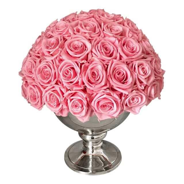 Luxurious light pink roses Valetines