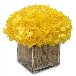 Heinau Coastal Glass Cube Yellow Flowers Arrangement