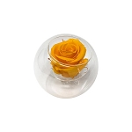 Heinau Rose in Glass Yellow Flower