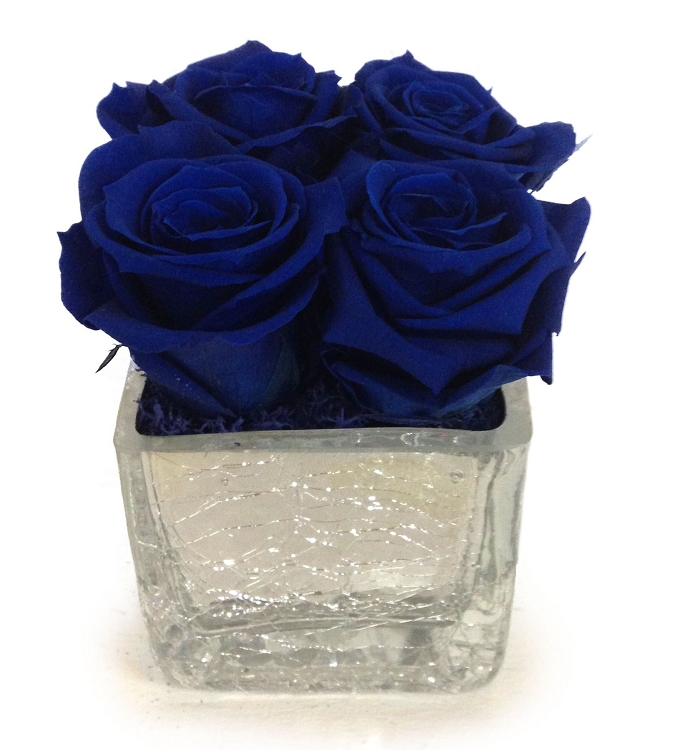 Led Cube Blooms By Heinau Natural Flowers Fresh For Over Midnight Blue