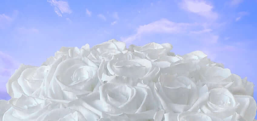 What Do White Roses Mean | Learn All About The Symbolism of White